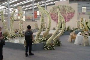 China Rose Show (37)