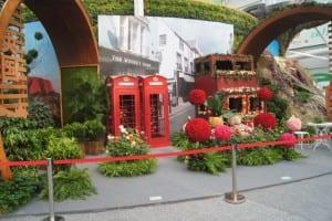 China Rose Show (9)