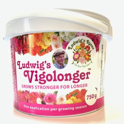 Ludwig's Vigolonger 750g